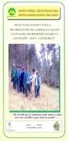 PIP - Reforestación de Laderas Sallique