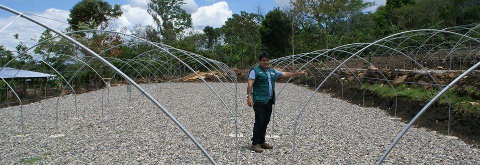 Construcción de Viveros del PIP Reforestación Bagua